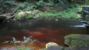 The Blood Red River
