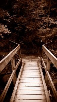 Follow That Path