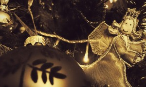 Christmas Moose 2014